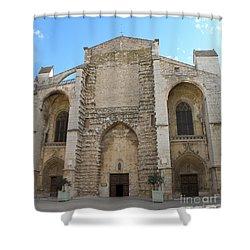 Basilica Of Saint Mary Madalene Shower Curtain by Lainie Wrightson