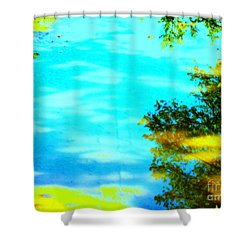 Beautiful Summer Day Shower Curtain by Pauli Hyvonen