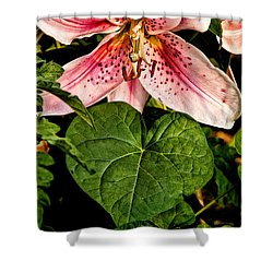 Beauty Shower Curtain by Christopher Holmes