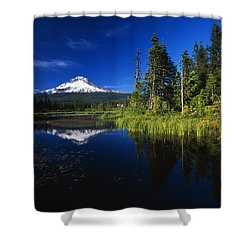 Beaver Dam In Pond, Reflection Of Mount Shower Curtain by Natural Selection Craig Tuttle