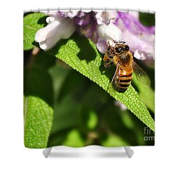 Bee At Work Shower Curtain by Kaye Menner