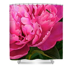 Behold The Beauty Shower Curtain by Frozen in Time Fine Art Photography