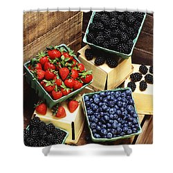 Berries Shower Curtain by Photo Researchers