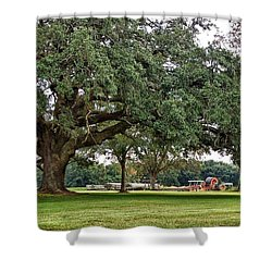 Big Oak And The Tractors Shower Curtain by Michael Thomas