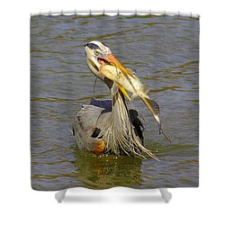 Bigger Fish To Fry Shower Curtain by Robert Frederick