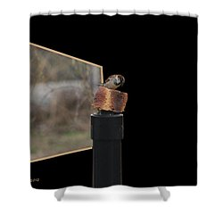 Biggest Breadcrumb Ever Shower Curtain by EricaMaxine  Price