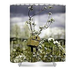 Bird House Shower Curtain by Joana Kruse