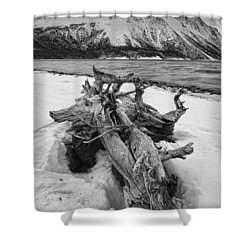Black And White Version Of Kathleen Shower Curtain by Robert Postma
