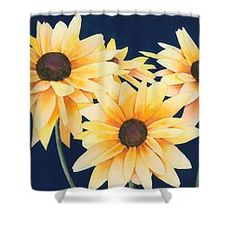 Black Eyed Susans 2 Shower Curtain by Ken Powers