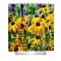 Black Eyed Susans II Shower Curtain by Jai Johnson
