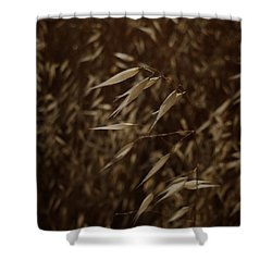 Blowin' In The Wind Shower Curtain by Xueling Zou