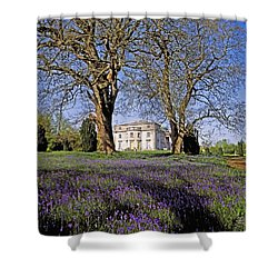 Bluebells In The Pleasure Grounds, Emo Shower Curtain by The Irish Image Collection
