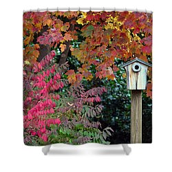 Bluebird House Color Surround Shower Curtain by Sandi OReilly