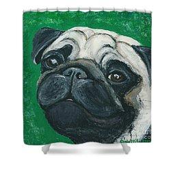 Bo The Pug Shower Curtain by Ania M Milo