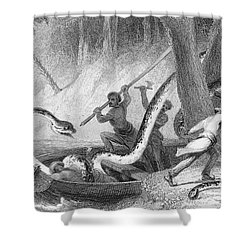 Boa Constrictor Attack Shower Curtain by Granger