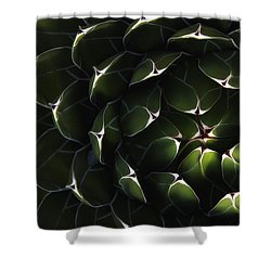 Bolivian Plant In Late Afternoon Light Shower Curtain by Robert Postma