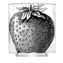 Botany: Strawberry Shower Curtain by Granger