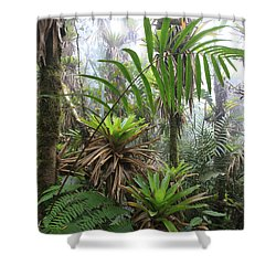 Bromeliads And Tree Ferns  Shower Curtain by Cyril Ruoso