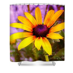Brown-eyed Susan Shower Curtain by Judi Bagwell