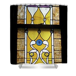 Brown Stained Glass Window Shower Curtain by Thomas Woolworth