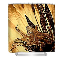 Brown Wildflowers Shower Curtain by Chris Berry