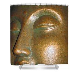 Buddha 25 Shower Curtain by Cheryl Young