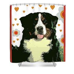 Burmese Mountain Dog Shower Curtain by One Rude Dawg Orcutt