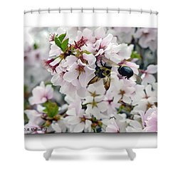 Busy Bees Shower Curtain by Brian Wallace