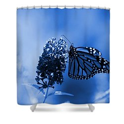Butterfly In Blue Shower Curtain by Angie Tirado