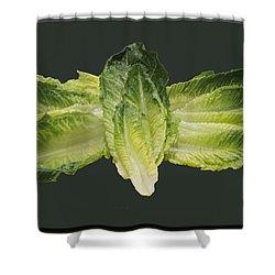 Butterfly Lettuce Shower Curtain by LeeAnn McLaneGoetz McLaneGoetzStudioLLCcom