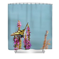 Butterfly Morning Shower Curtain by Bill Cannon