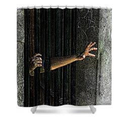 Caged 3 Shower Curtain by Jill Battaglia