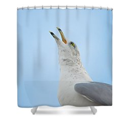 Call Of The Wild Shower Curtain by Bill Cannon