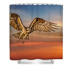 Calling It A Day Shower Curtain by Susan Candelario
