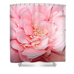 Camellia Shower Curtain by Louise Heusinkveld