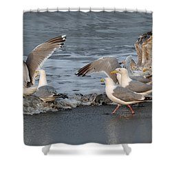 Catch Me If You Can  Shower Curtain by Debra  Miller