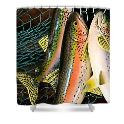 Catch Of The Day Shower Curtain by Karon Melillo DeVega