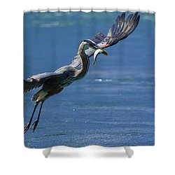 Catch Of The Day Shower Curtain by Sebastian Musial