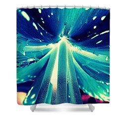 Celestial Radiance Shower Curtain by Renee Trenholm