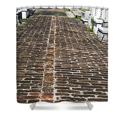 Cemetary Path Shower Curtain by Ray Laskowitz