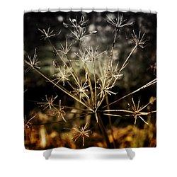 Changes Shower Curtain by Ellen Heaverlo