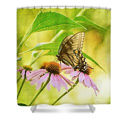 Child Of Sun And Summer Shower Curtain by Lois Bryan