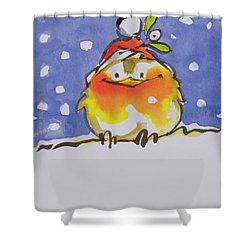 Christmas Robin Shower Curtain by Diane Matthes