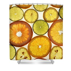 Citrus Slices Shower Curtain by Photo Researchers