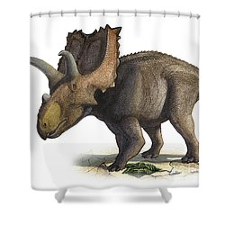 Coahuilaceratops Magnacuerna Shower Curtain by Sergey Krasovskiy