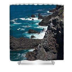 Coastline Shower Curtain by Gaspar Avila