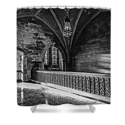 Cold Rock Warm Light Shower Curtain by CJ Schmit