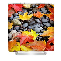 Colorful Autumn Leaves Prints Rocks Shower Curtain by Baslee Troutman