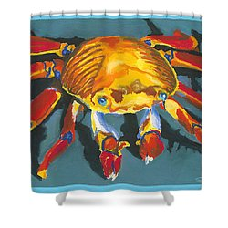 Colorful Crab With Border Shower Curtain by Stephen Anderson