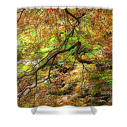 Colorful Maple Leaves Shower Curtain by Carol Groenen